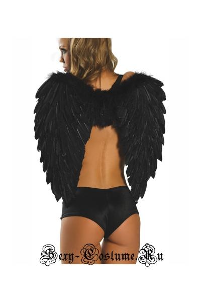Крылья китай 81250-2