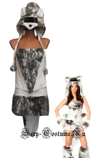 Симпатичный волк из клубной среды 9552